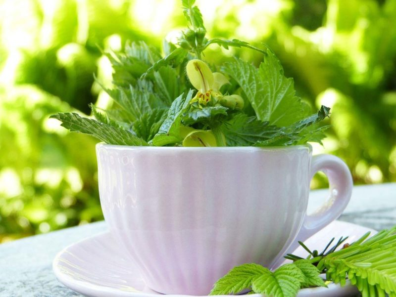 Detox Tee Guide: alles, was du wissen musst